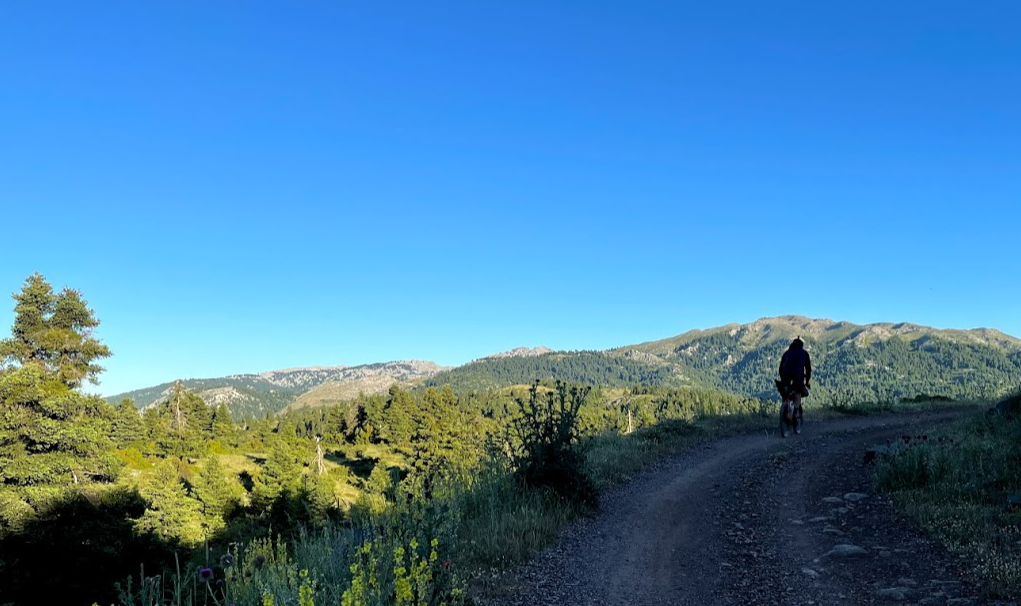 cyclist on a rural road 2